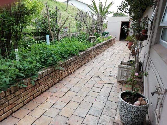garden-back-off-kitchen